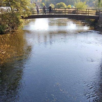 River Coln, Bibury