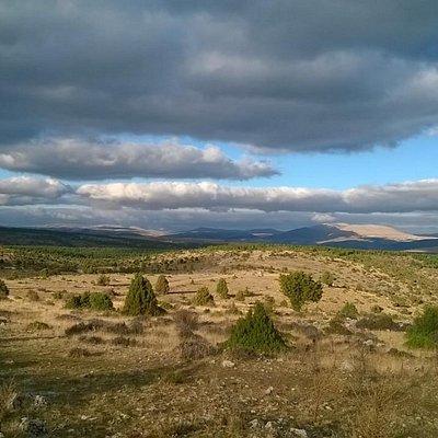 Kent park horizon view