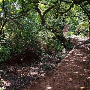 Gureghar Nature Trail