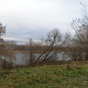 Ленино-Кокушкино, Музей-Заповедник, вид из дома усадбы на запруду, ноябрь 2015