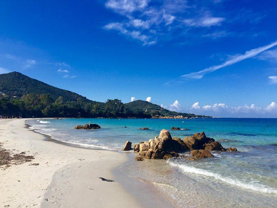 Sofitel Golfe D Ajaccio Thalassa Sea And Spa Prices Hotel Reviews Porticcio France Tripadvisor