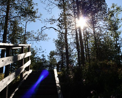 Uuron kierros nature trail