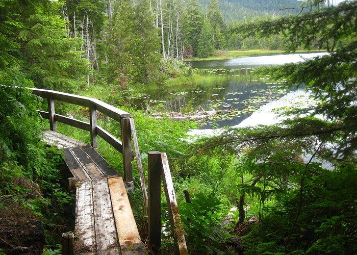 Boardwalk trail around Balls Lake.