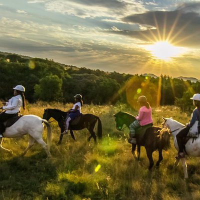 Sunset Horseback Safari - La'WiiDA Lodge Johannesburg