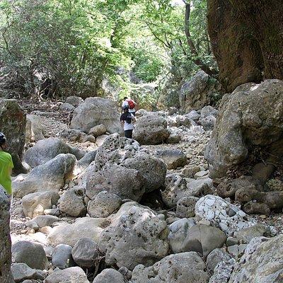 ущелье Диктамос Крит