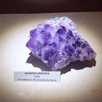 Linda amostra púrpura