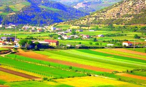 Nurellari Winery location