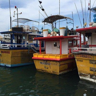 Hikkaduwa Harbour