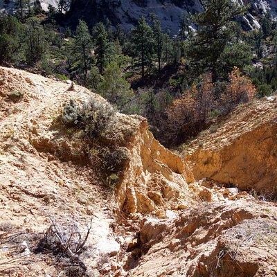East Rim Trail Zion National Park Utah