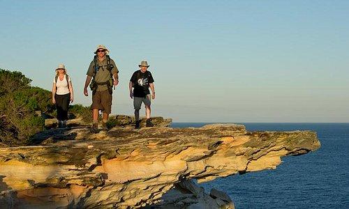 Sydney Coast Walks