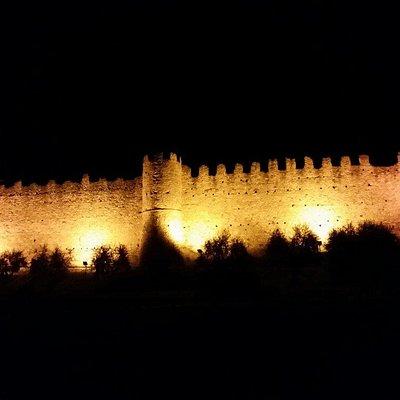 Castello di Moniga
