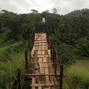 En fantastisk oplevelse, at gå over den næsten 100 meter lange bro, som hænger cirka 15 meter ov