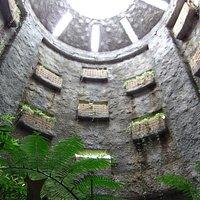 温室 緑の塔