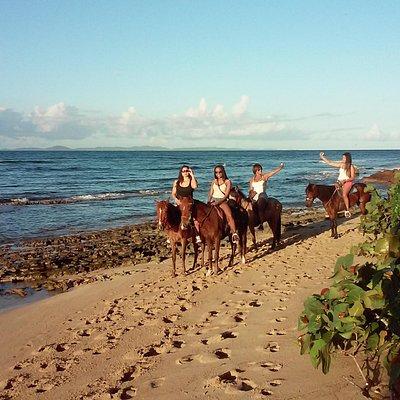 Horseback riding in Vieques Island.