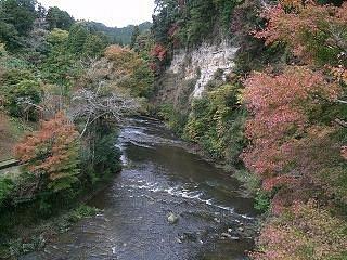 紅葉と川の水との配色が美しかったです
