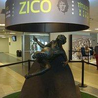 Homenagem ao jogador Zico