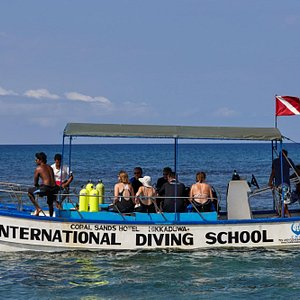 Leaving for the morning dive