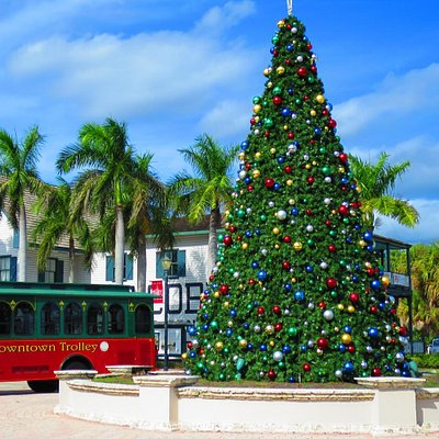 A beautiful Christmas tree and free trolley.
