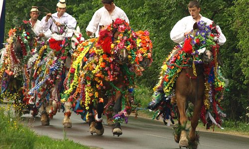 Horsemen going to Maramures traditional wedding