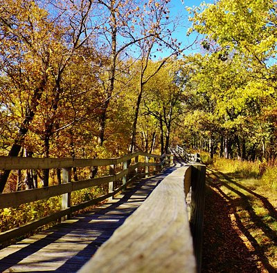 Handicapped accessible trail