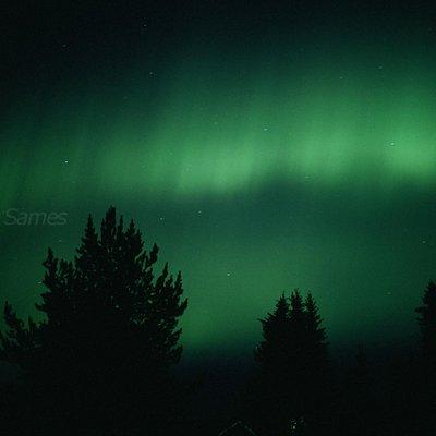 Aurore boréale près de Kiruna, Laponie suédoise