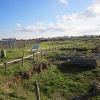 Particolare del parco archeologico
