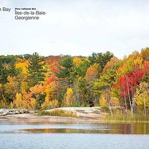 Fall colour along the shore of Beausoleil Island in the Cedar Spring area.