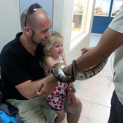 Petting a snake at the reptiles building