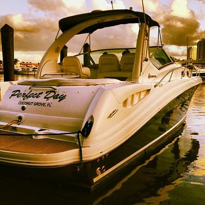 Our 36' Sea Ray