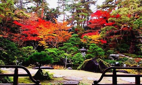 11月中旬に行きました! とても綺麗で感動しました!  是非新潟県に来た際は行くことをお勧めします!  春夏秋冬四季折々楽しめるとても素敵なところです