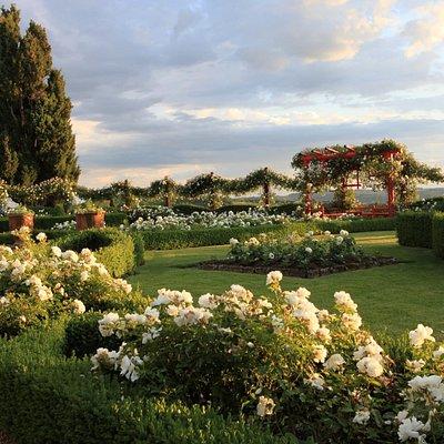Le Jardin Blanc (© Georges LÉVÊQUE)