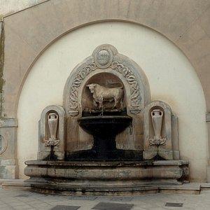 Fontana Del Toro...