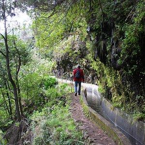 Levada Nova   Prazeres, Madeira