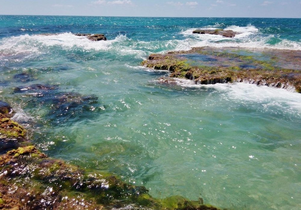 Пляж Пальмахим / Palmachim Beach