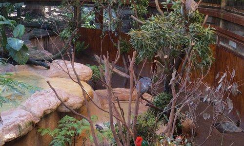 Wildlife exhibits