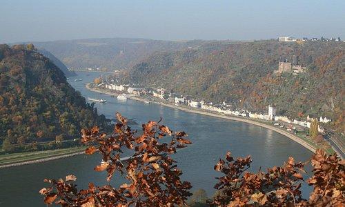 Рейн с самого верха