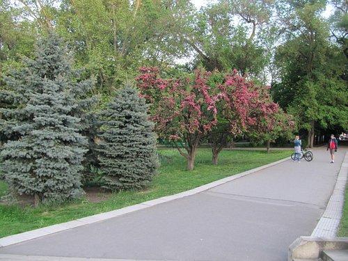 Parcul Catedralei – Кишинев