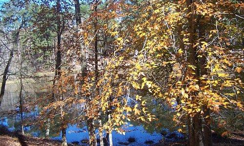 Lake Buncombe in the autumn