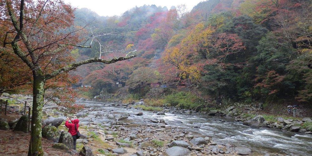 Tomoe River , Korankei