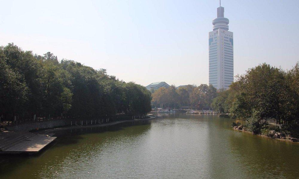 公園内の池と遊歩道