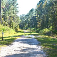 Bayard Conservation Center - the hiking trail