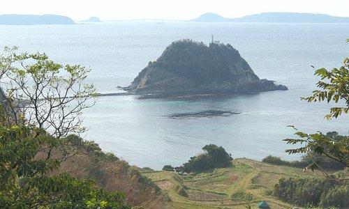 後方は角島と大橋、手前は棚田