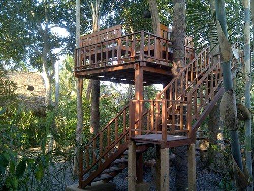 Agroo plantation coffee luwak merta harum