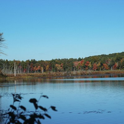 Autumn is a beautiful time on the refuge!