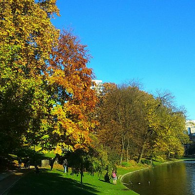 Autumn in Brussels