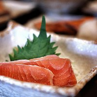 salmon chilled