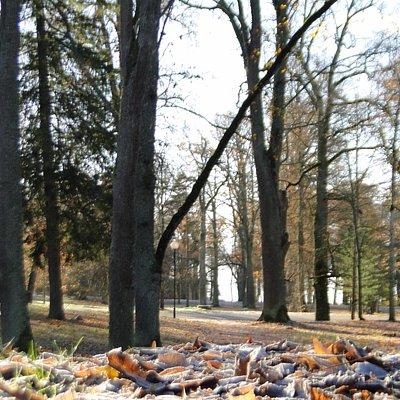 Kuremaa mõisa park