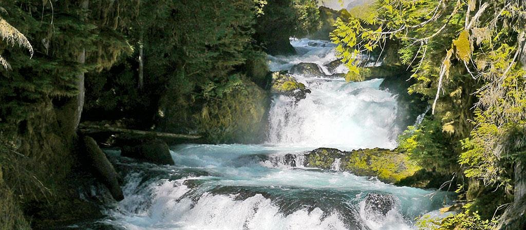 Between Koosah Falls and Sahalie Falls, McKenzie River