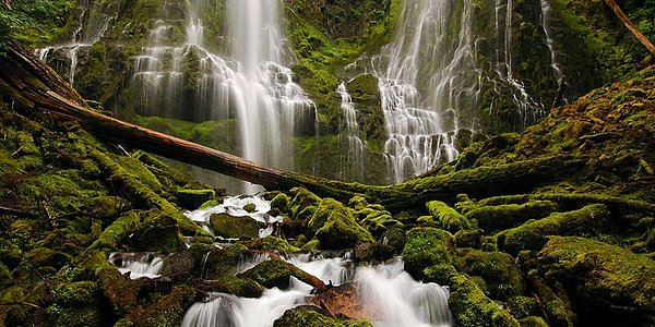 Proxy Falls on McKenzie Hwy (Hwy 242)
