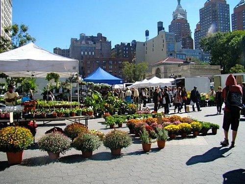fleurs union square market